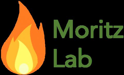 Moritz Fire Lab